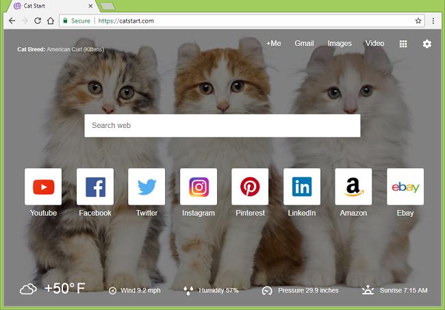 How to delete Cat Start 1.0.2 virus (ID: honeoiacmpjnbchlccbcbogafdfjgnim), chrome-extension://honeoiacmpjnbchlccbcbogafdfjgnim/newtab.html and https://catstart.com/