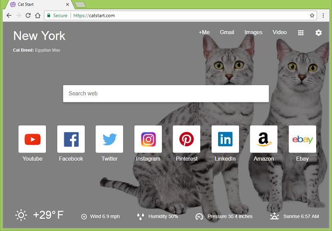 How to delete https://catstart.com/ virus