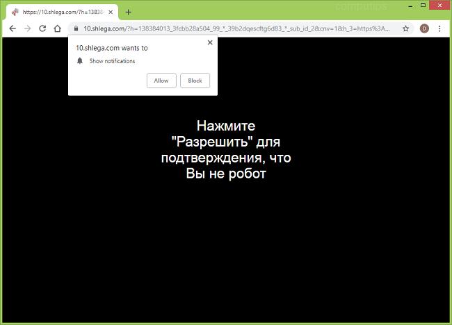 Delete https://shlega.com virus notifications