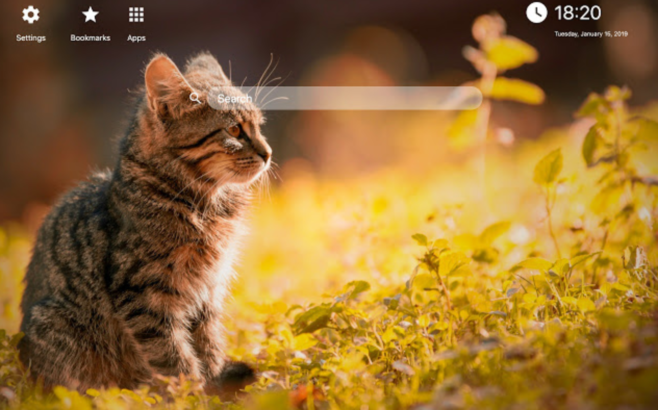 how to remove Kittens New Tab