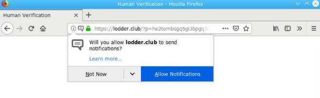 How to remove Lodder.club-Adware