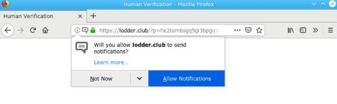 Como remover o Lodder.club-Adware