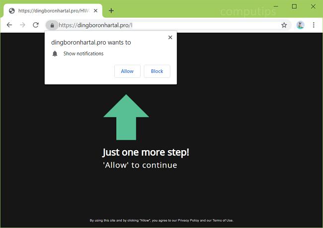Delete https://dingboronhartal.pro, p8.dingboronhartal.pro, p7.dingboronhartal.pro, p6.dingboronhartal.pro, p5.dingboronhartal.pro, p4.dingboronhartal.pro virus notifications