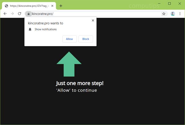 Delete kincoratne.pro, p8.kincoratne.pro, p7.kincoratne.pro, p6.kincoratne.pro, p5.kincoratne.pro, p4.kincoratne.pro, etc. virus notifications