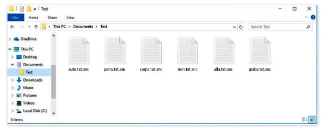 remove snc ransomware