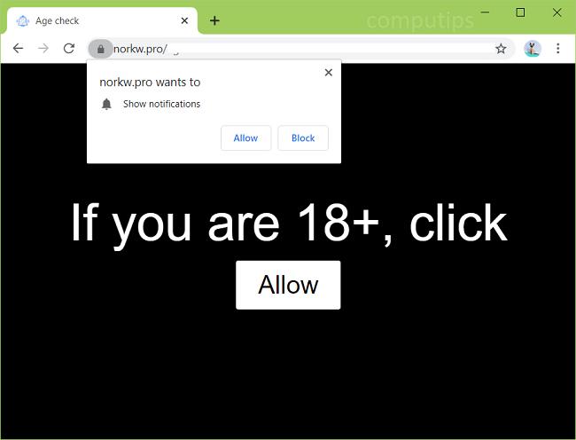 Delete nork w.pro, 3z1nu.norkw.pro, 4xr52.norkw.pro, y7lub.norkw.pro, etc. virus notifications