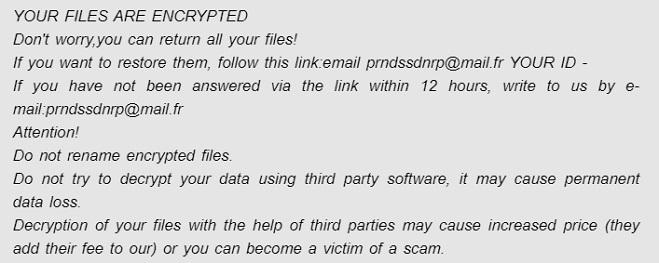 prrnds ransomware