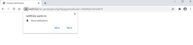 remover anúncios pop-up net05.biz