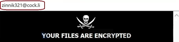 remove zin ransomware