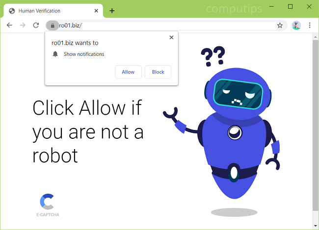 Delete 0.ro01.biz,ro07.biz, ro08.biz virus notifications