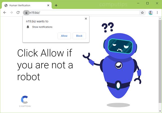 Delete 0.n19.biz, n17.biz, n09.biz virus notifications